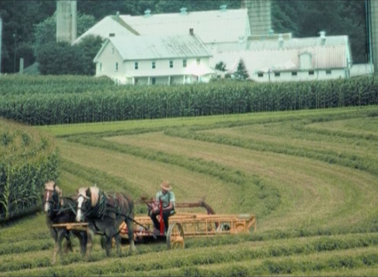 Amish e Dintorni documentary